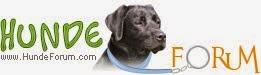 Hundeforum.com