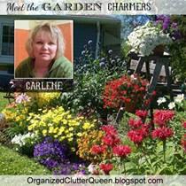 Organized Clutter www.organizedclutterqueen.blogspot.com