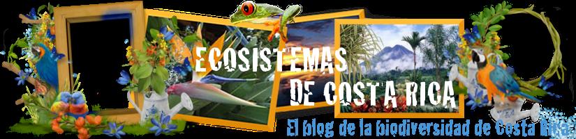 ECOSISTEMAS DE COSTA RICA
