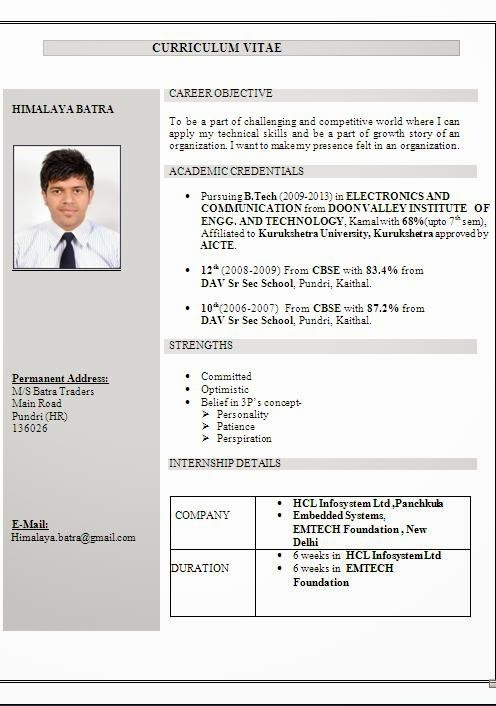 Professional cv and resume writing services
