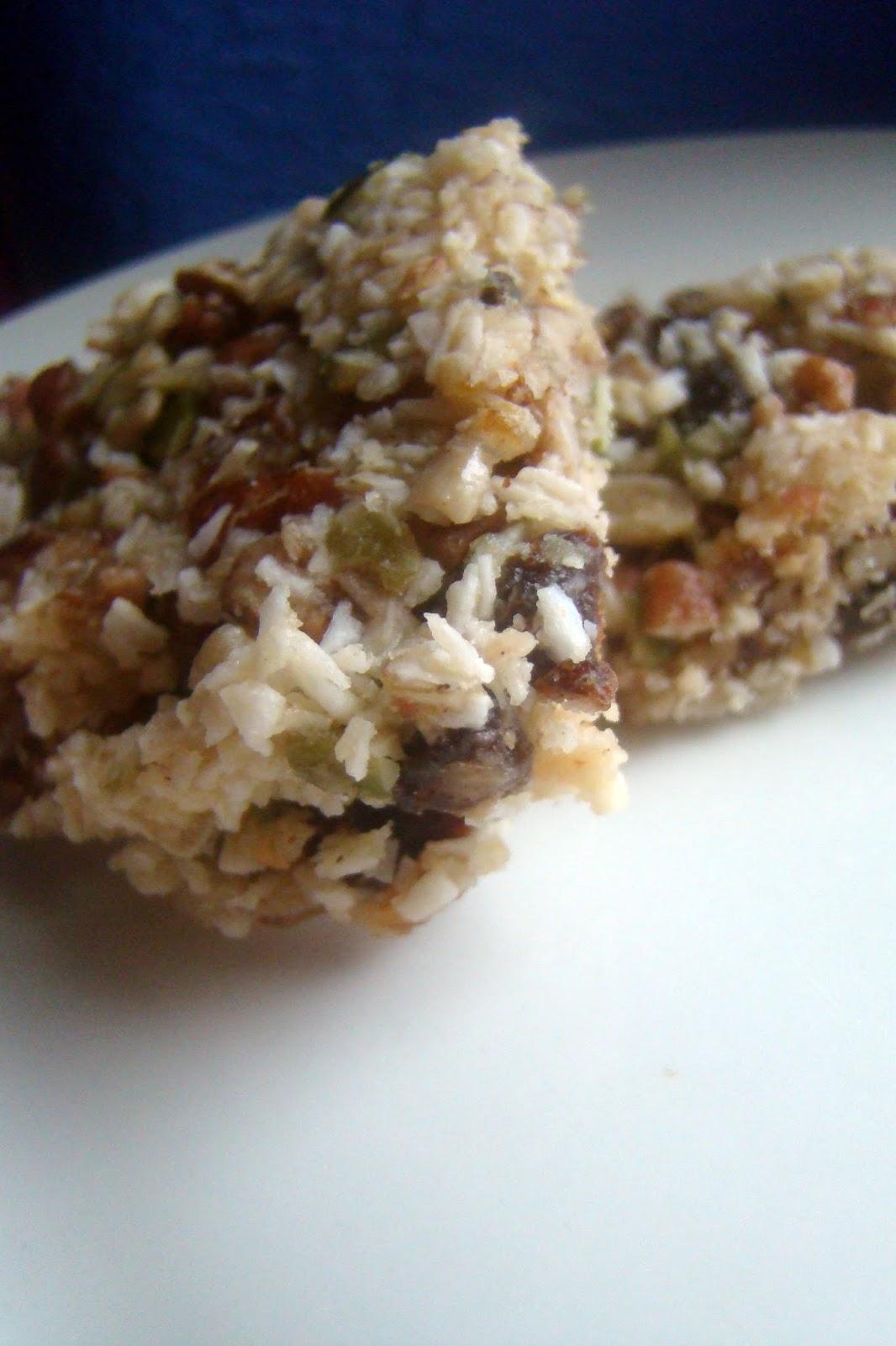 Nourished and NurturedFruit and Nut Power Bars (Primal GAPS
