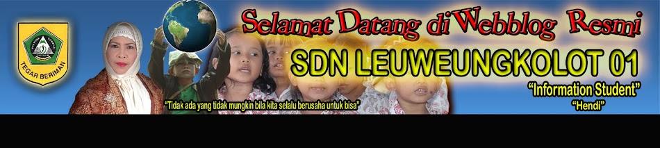 SDN LEUWEUNG KOLOT 01