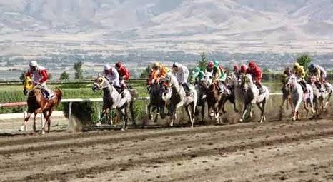 02.10.2013 elazığ yarış programı tahmini