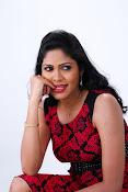 Actress Shaarika photo session gallery-thumbnail-15