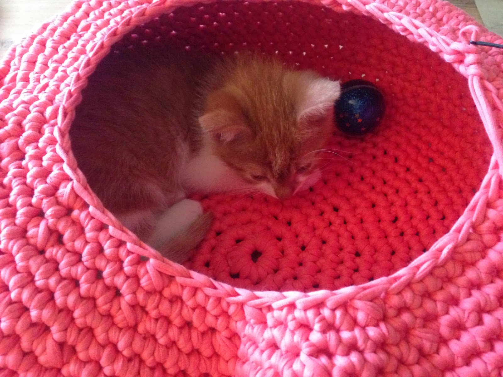 Free Crochet Patterns For Cat Houses : Lily Razz: Crocheted Cat Nest