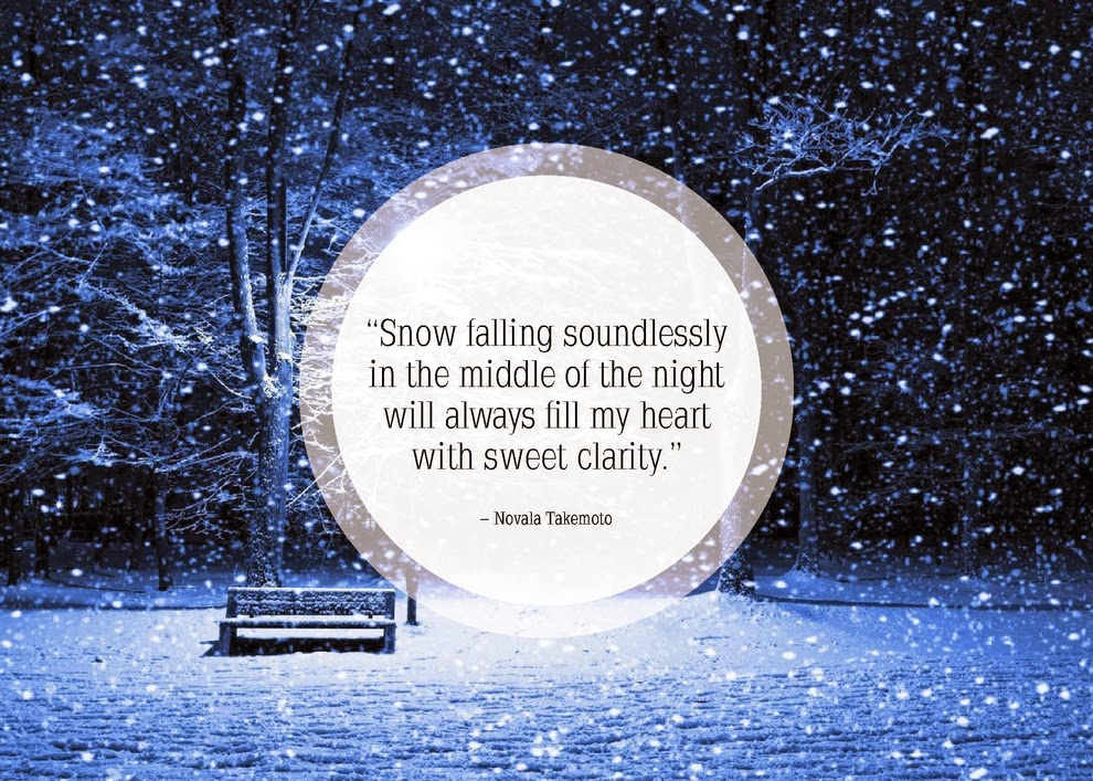 Night snowfall quote of 2015