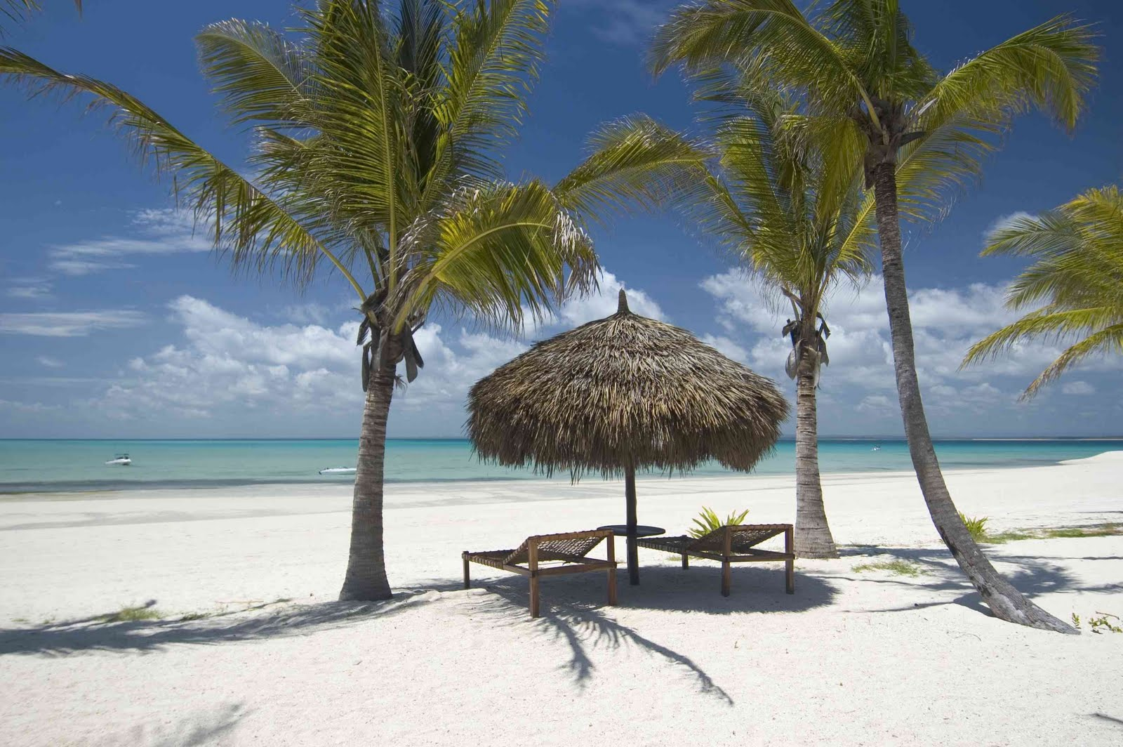 Pemba and matemo holiday package pemba mozambique accommodation - Mozambique Matemo Island Now Till 15 June 2011