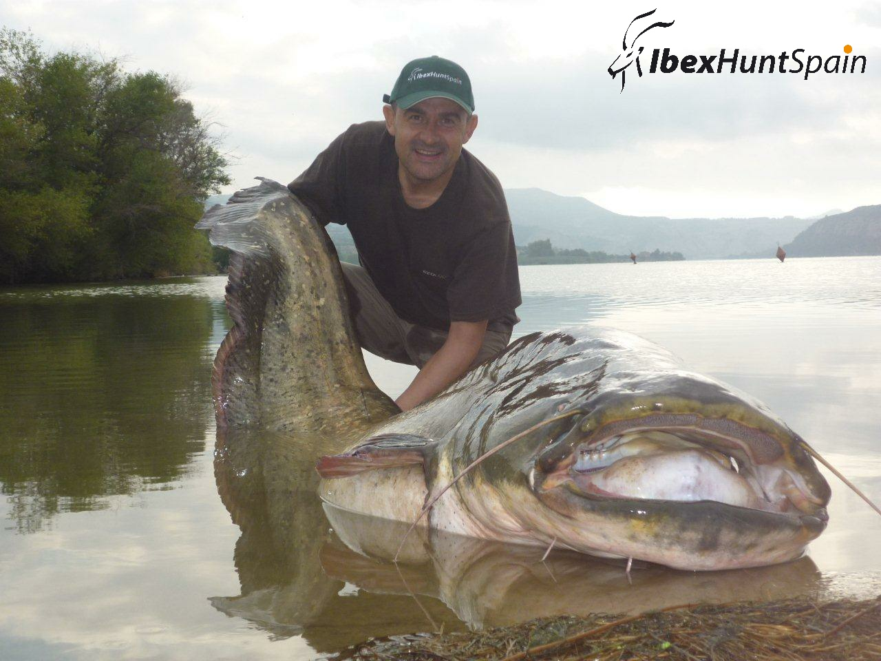 hunting ibex in spain fishing catfish in spain fishing