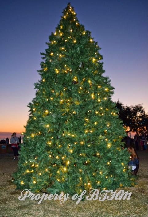 lakefront christmas tree