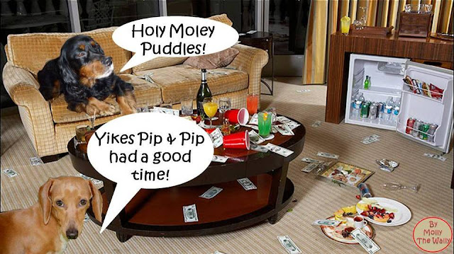 Pip & Puddles Go Large In London 11!
