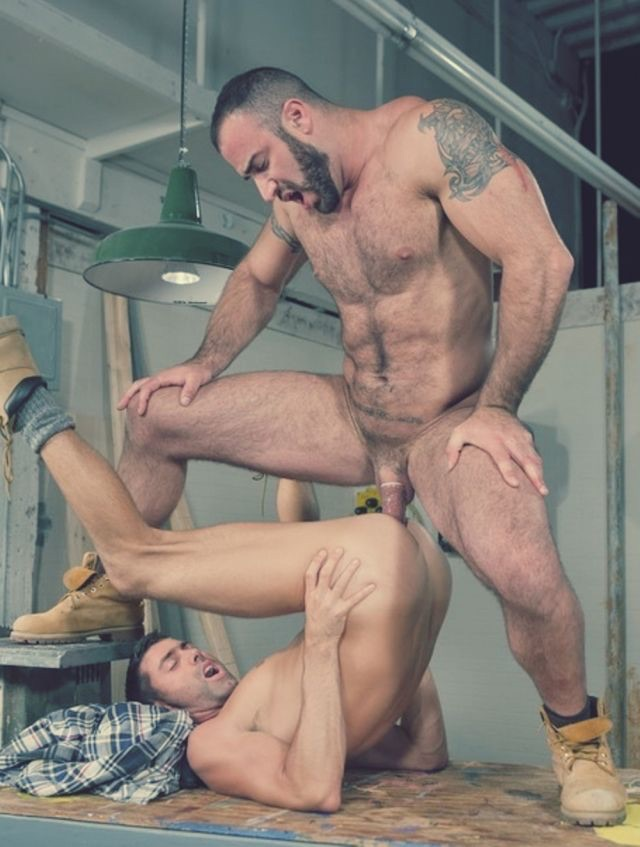 Male gay gallery