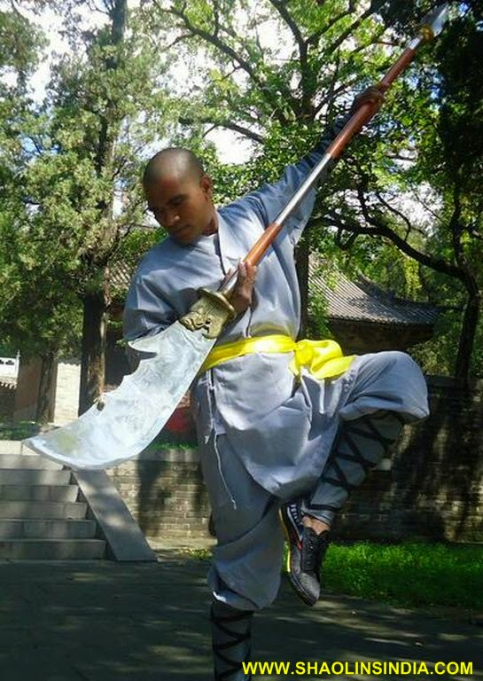 Learn snake style kung fu