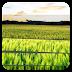 Xperia Z Lockscreen v1.2.1 Apk Full [Actualizado 4 Mayo 2014]