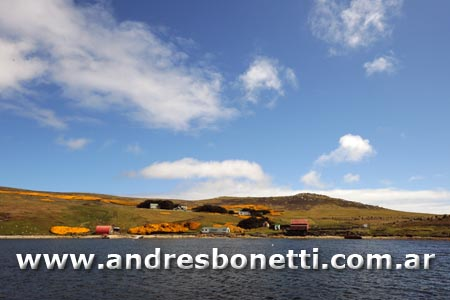 West Point - Islas Malvinas - Falkland Islands - Andrés Bonetti