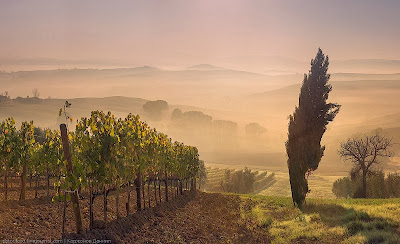 фото Тосканы