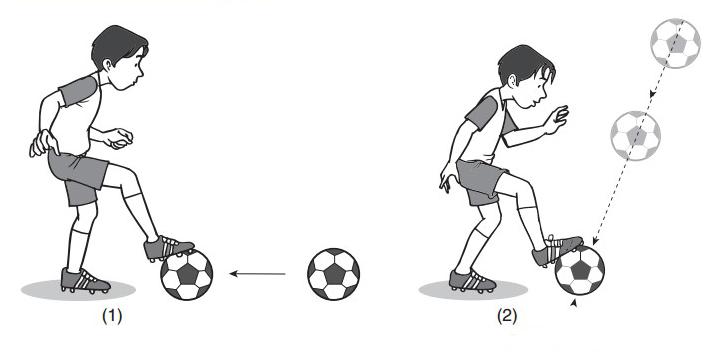 Teknik mengontrol bola dengan telapak kaki sebagai berikut.