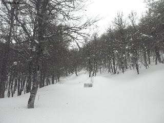 Condiciones de nieve en Picos de Europa , Guias de montaña de Picos de Europa , Guiasdelpicu.com