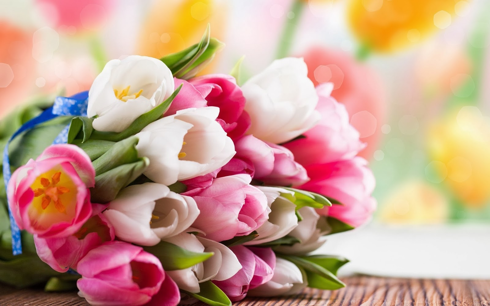 Flower Tulip Bouquet Wallpaper Beauty Walpaper