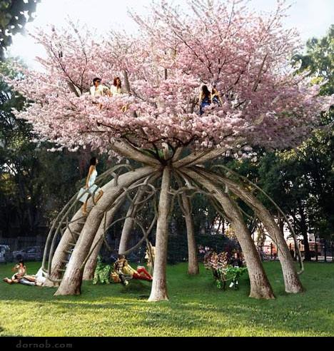 Weeping Cherry Blossom Tree Painting House