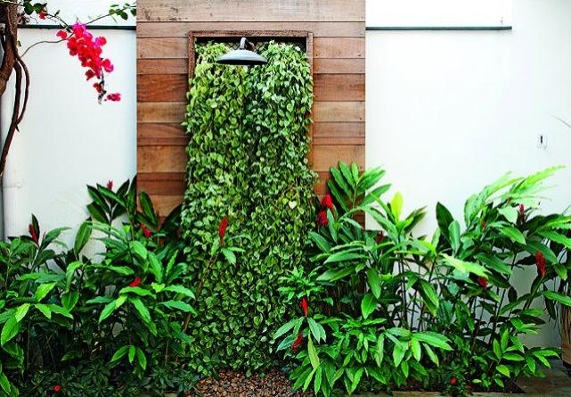 jardim vertical xaxim:Em volta do chuveiro, peperômias e ao longo da parede, maciços de