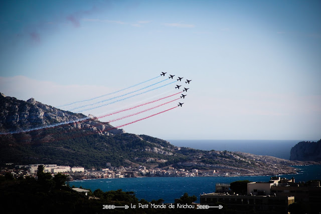 PAF_PATROUILLE_DE_FRANCE_SALON_MARSEILLE_2015_MEETING_PRADO