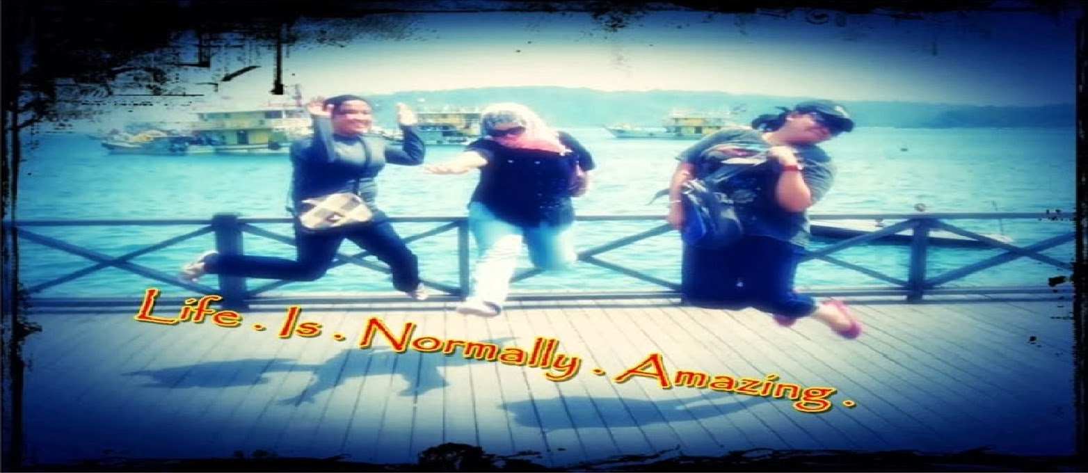 LiFe iS NoRmAlLy AmAzInG...