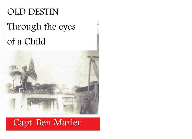 OLD DESTIN Through the Eyes of A Child, the book