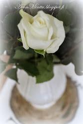 Ruusu Sinulle!