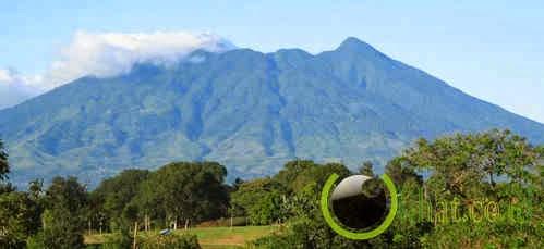 Gunung Salak-Halimun, Jawa Barat