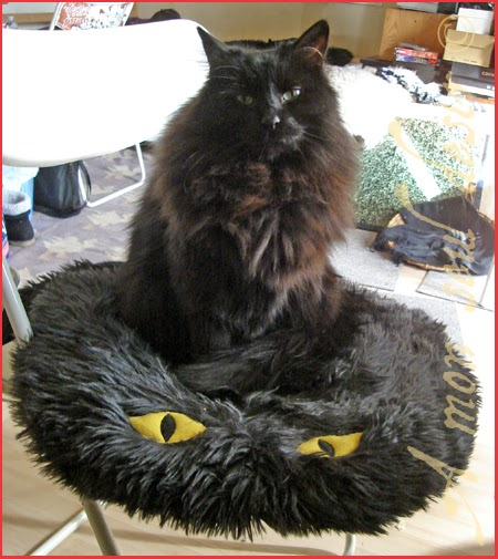 Le blog de la boutique bijoux et merveilles take a black cat sit it on - Coussin fourrure ikea ...