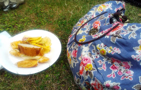 Library Camp picnic