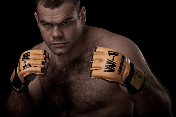ufc mma heavyweight fighter gabriel gonzaga wallpaper picture image