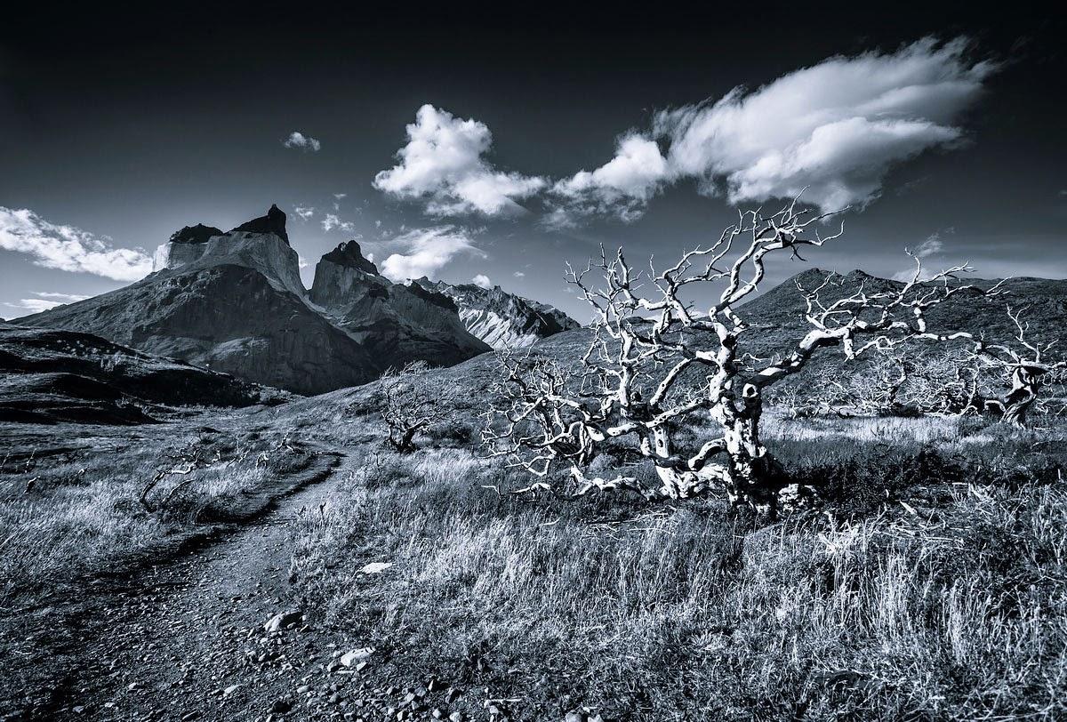 Монохромные горы. Фото