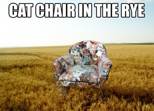 Cat Chair In The Rye