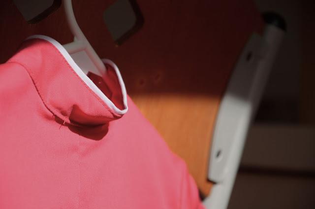 The Dress, detail 1