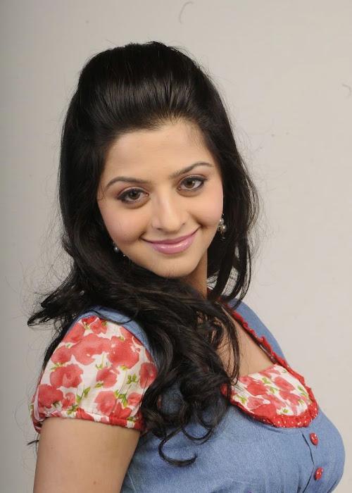 vedika shoot actress pics