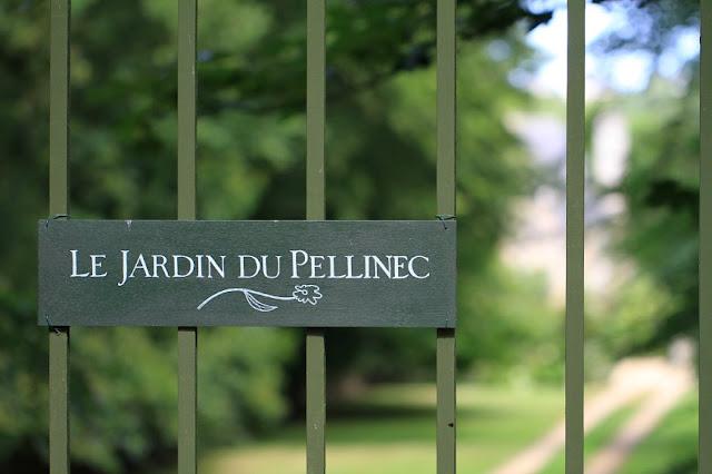Le jardin des poussins ao t 2015 - Jardin du pellinec ...