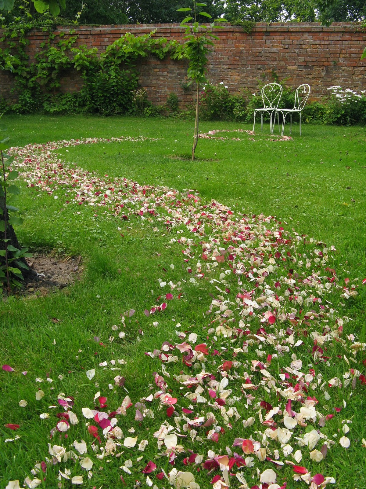 The Confetti Blog: How to create Wedding Petal Pathways and Aisles ...