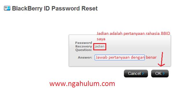 Cara Mengatasi Lupa Password Blackberry ID