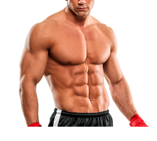 Chiseled In 30 Workout Program Review