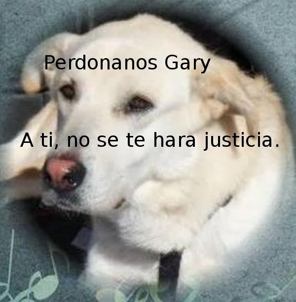 GARY LLEVADO A LA PERRERA POR SU ADOPTANTE, Y SACRIFICADO EN ELLA