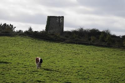 Un des deux moulins à vent de la Grée de Renac
