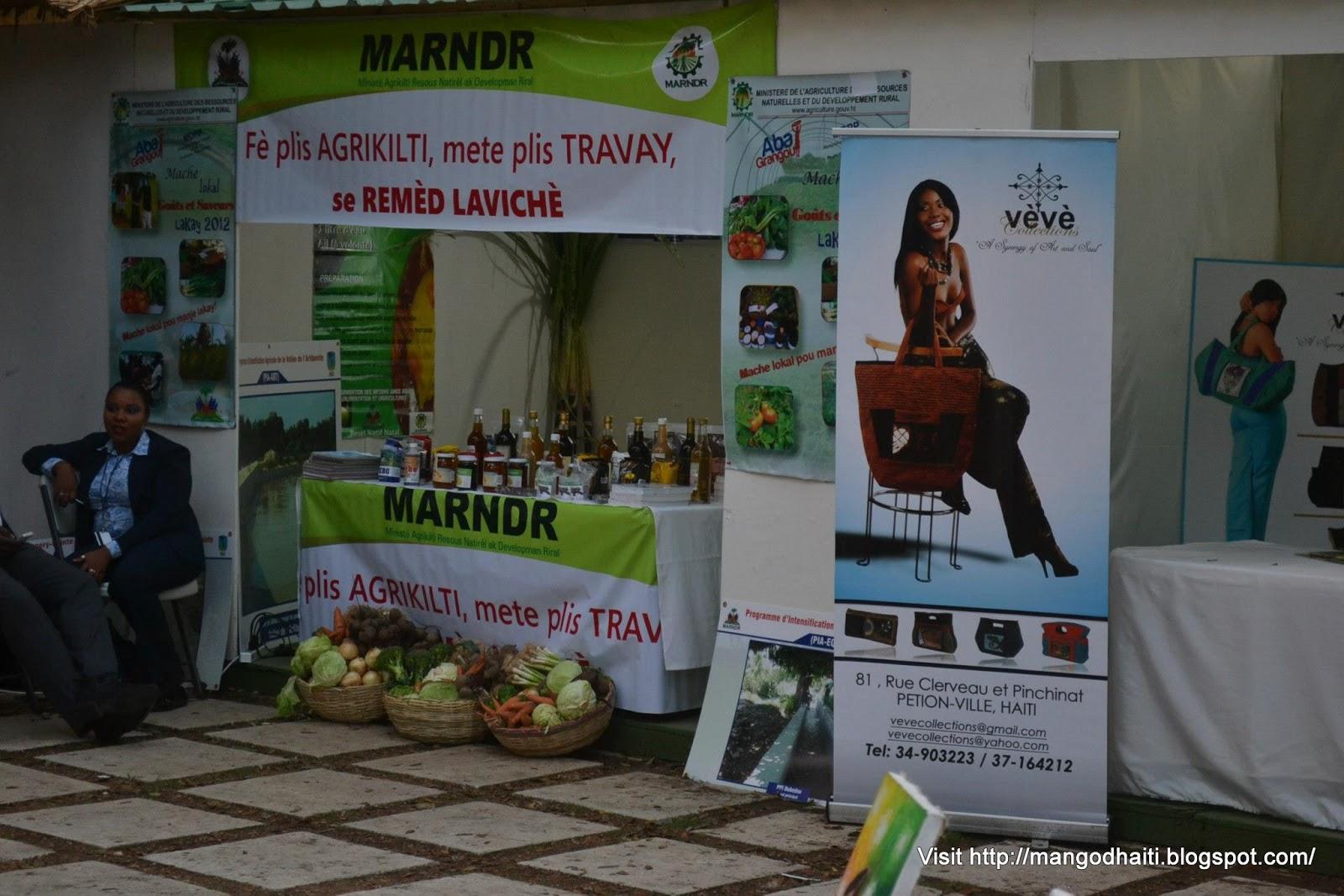 Ministere de la culture haiti sommet aec foire agro artisanale for Chambre de culture artisanale
