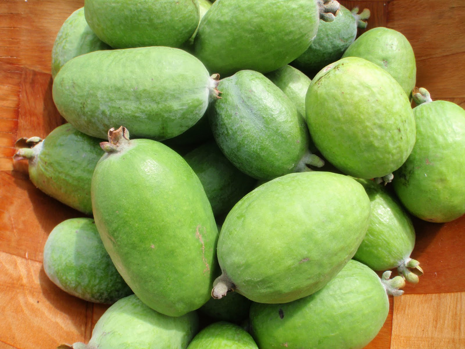 Useful properties of feijoa. How to eat the fruit