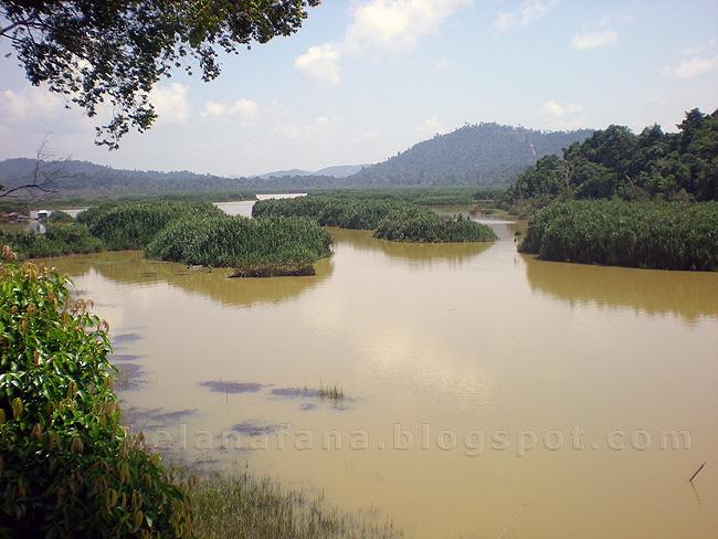 Tasik Chini Malaysia  city photo : tasik chini