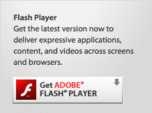 play online cricket games without adobe flash player