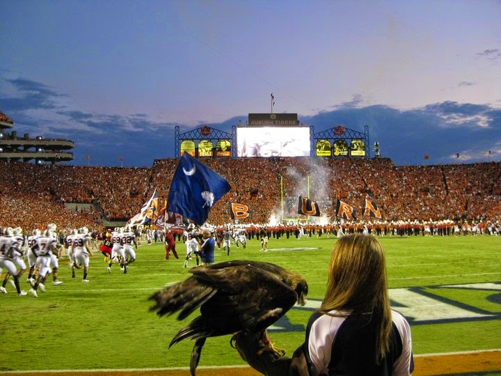 http://en.wikipedia.org/wiki/War_Eagle#mediaviewer/File:Nova092510.JPG