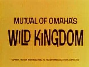 Mutual of Omaha's Wild Kingdom logo