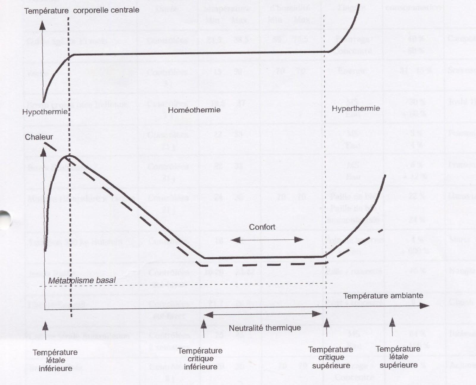 Saintis akademis gambar 1 skema evolusi termolisis garis terputus putus dan termogenesis dengan temperatur lingkungan kurva termogenesis berdampingan panas seekor ccuart Gallery