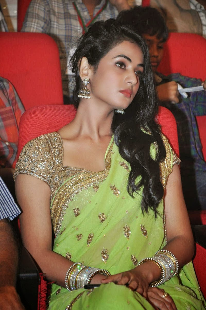 Sonal Chauhan hot in Saree HD Wallpapers 2014